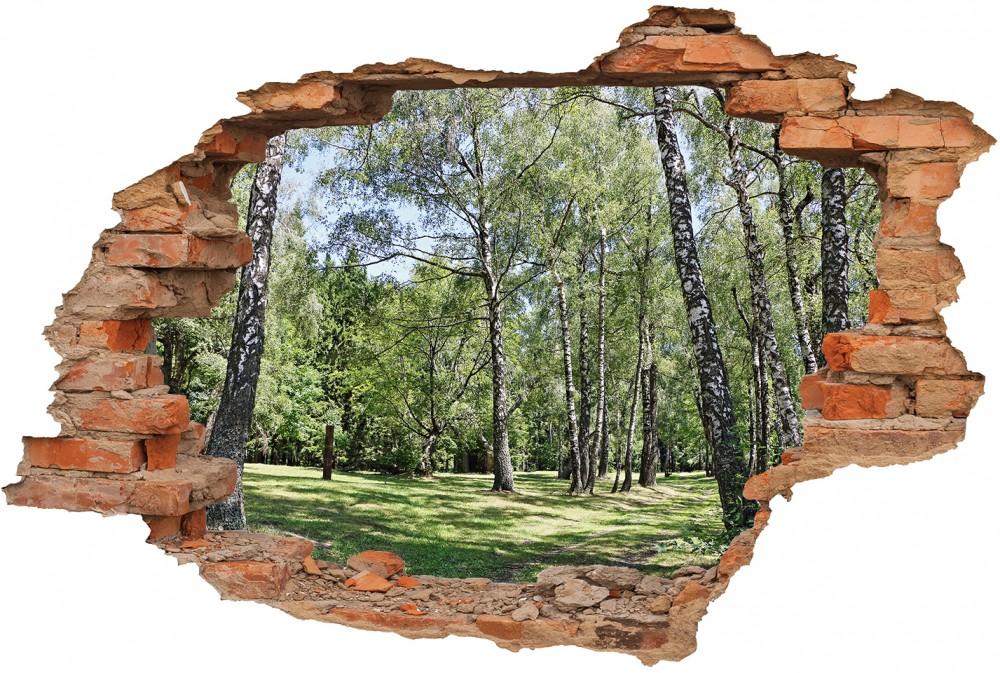Dziura w ścianie - #dckr230