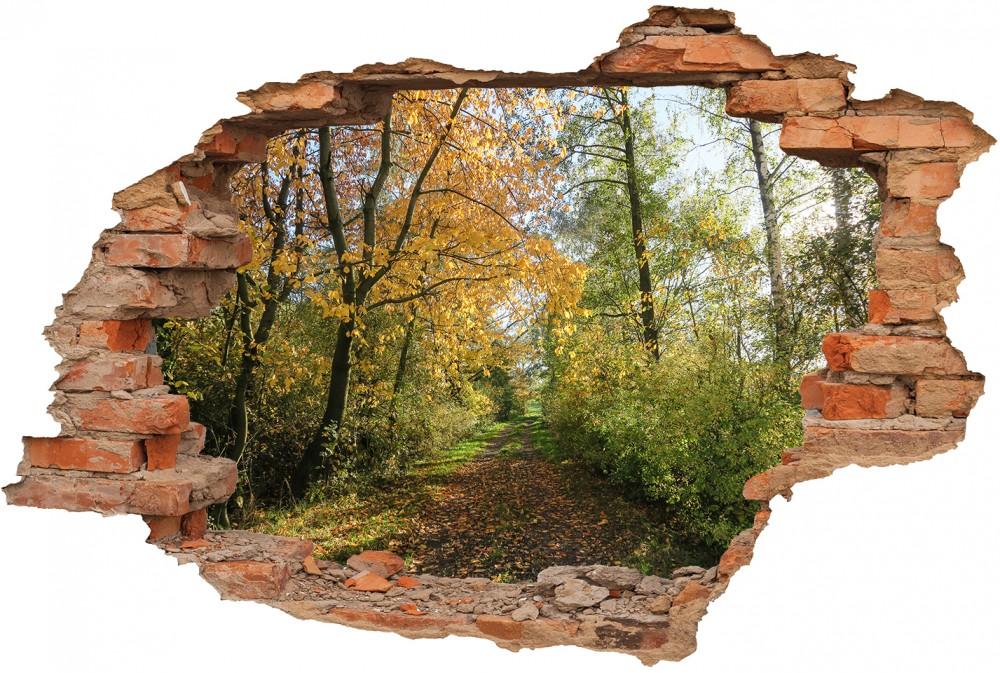 Dziura w ścianie - #dckr250