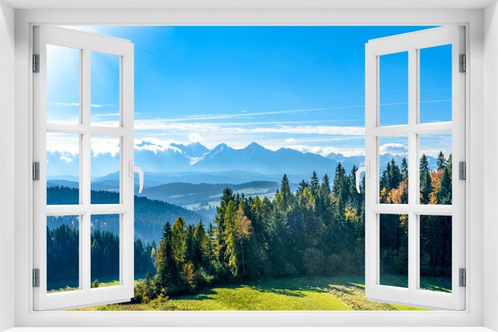 kr121-okno