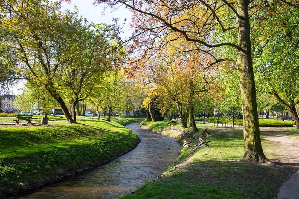 Park - #kr164