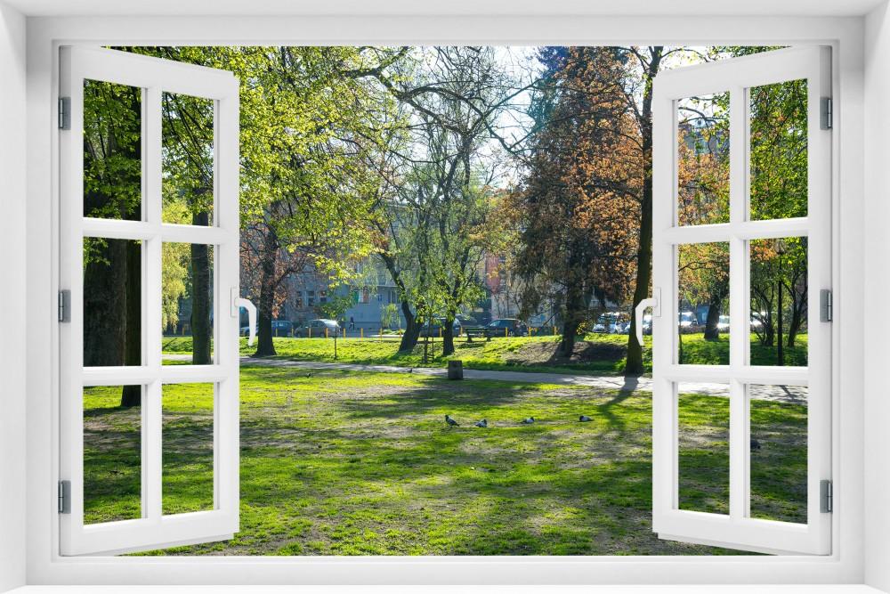 kr165-okno