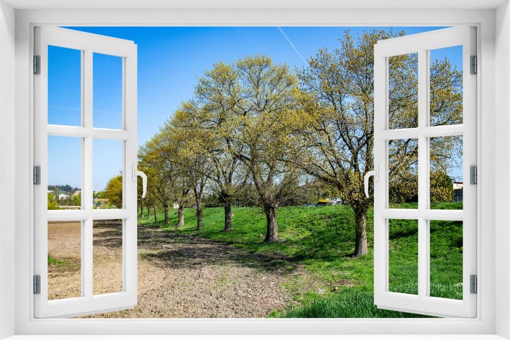 kr182-okno