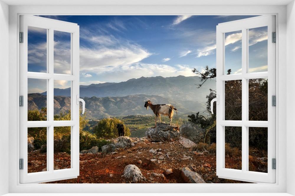 kr202-okno