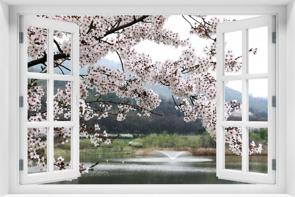 kr222-okno