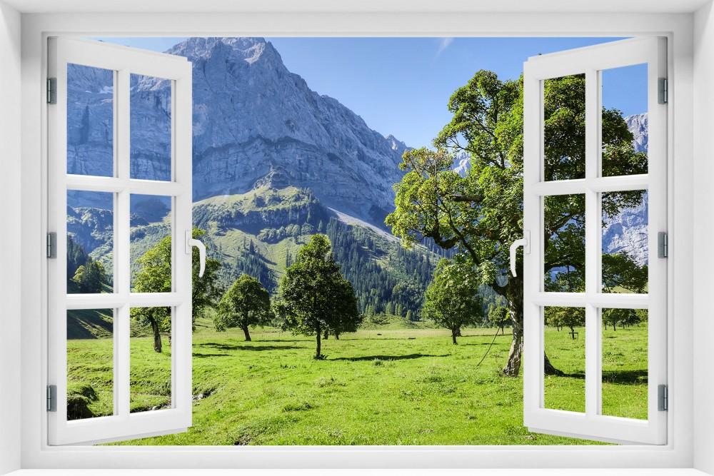 kr231-okno