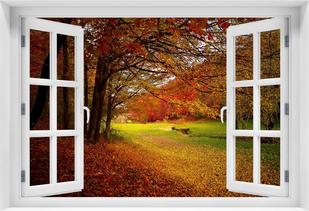 Las krl2-okno