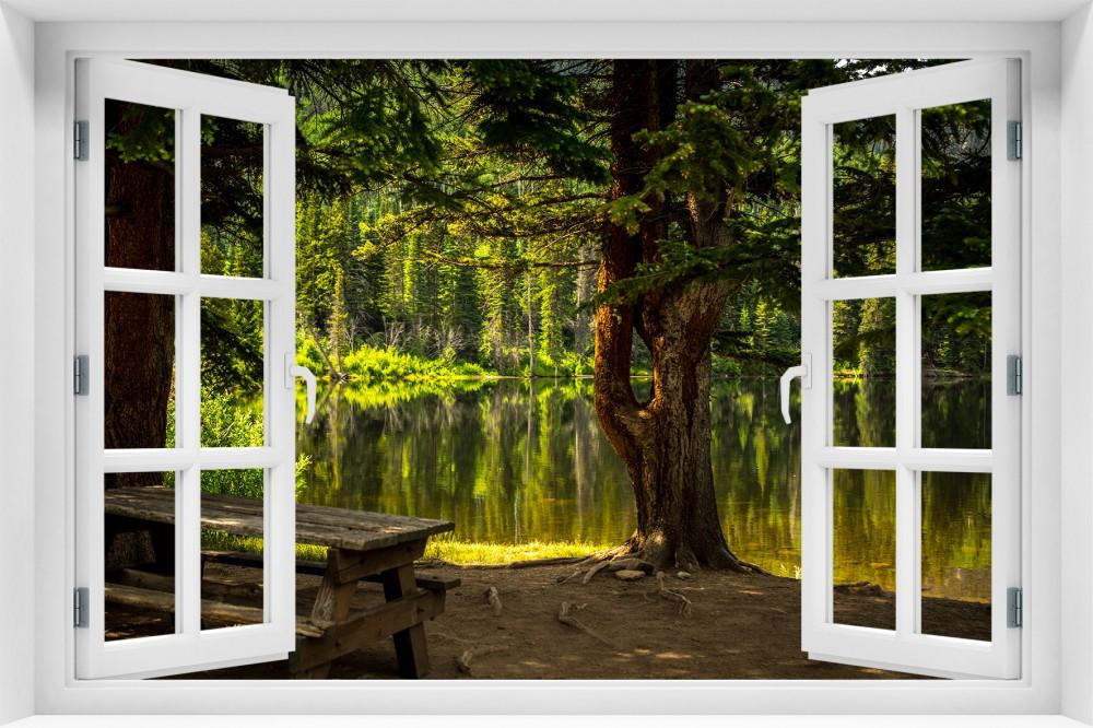 Las krl6-okno