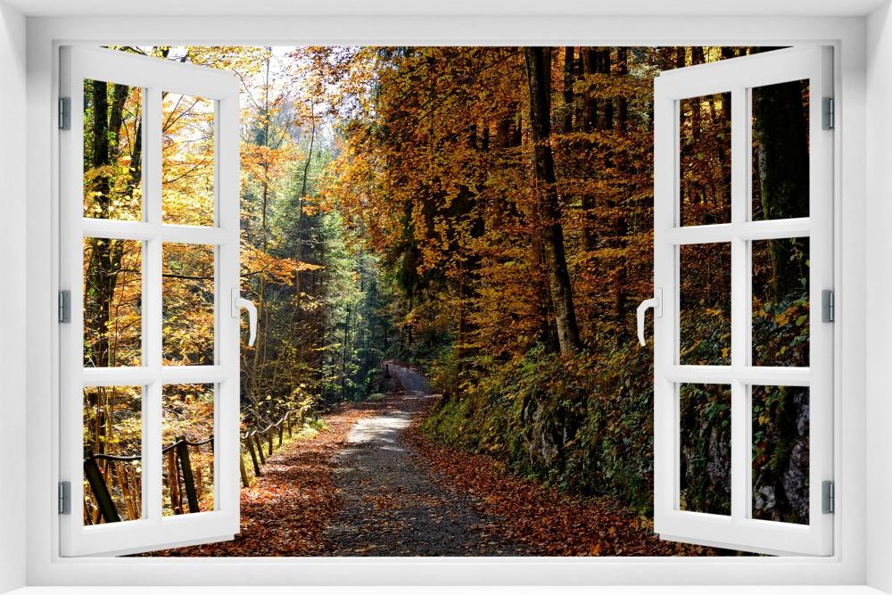 Las krl24-okno