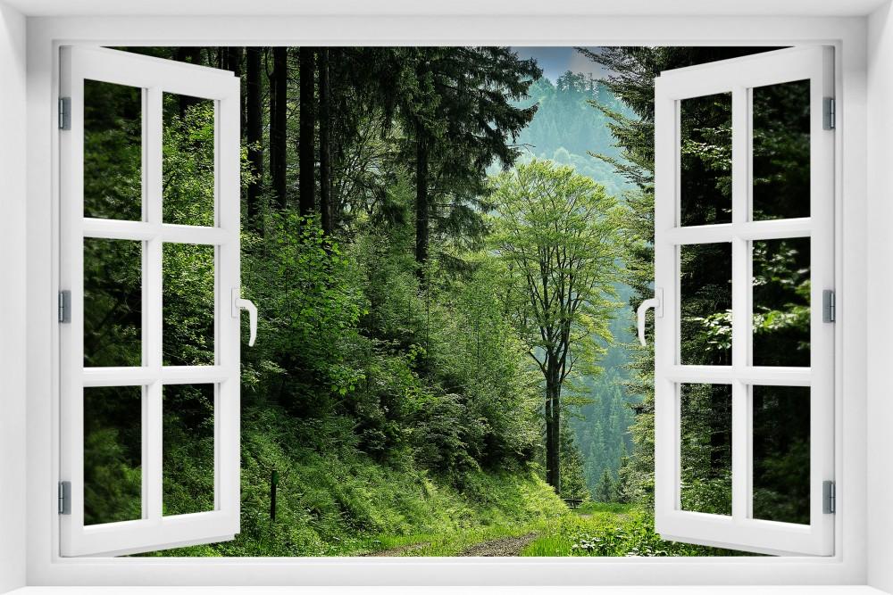 Las krl25-okno
