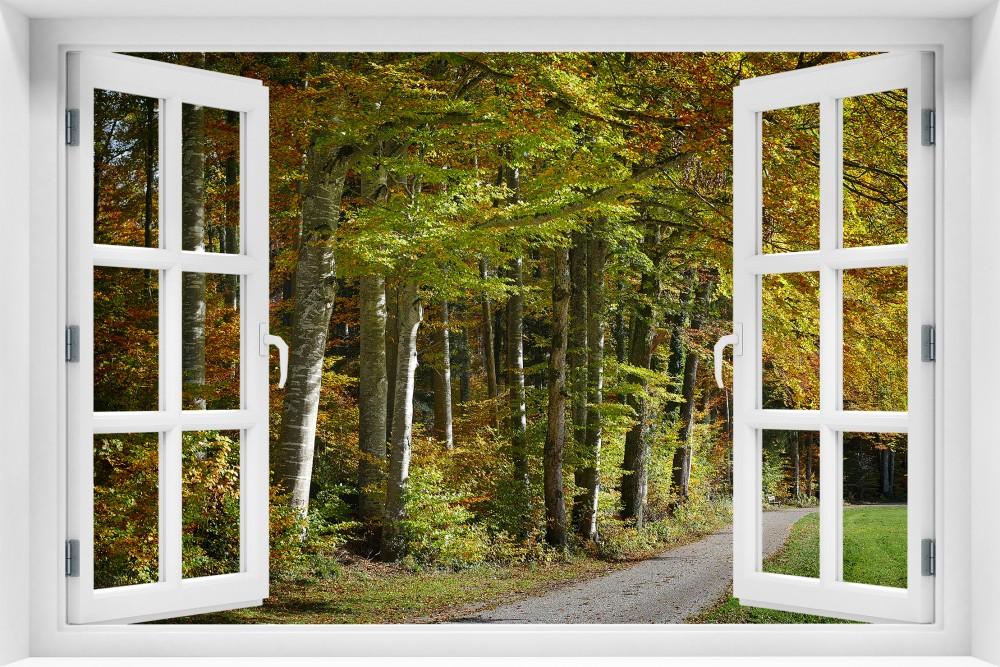 Las krl31-okno