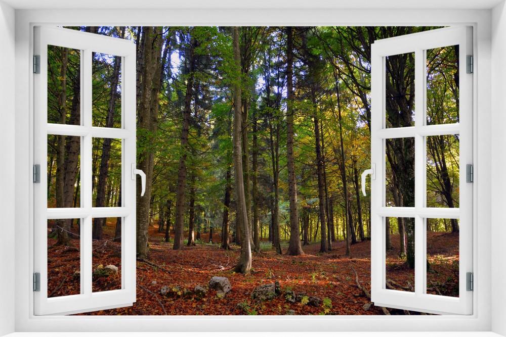 Las krl33-okno
