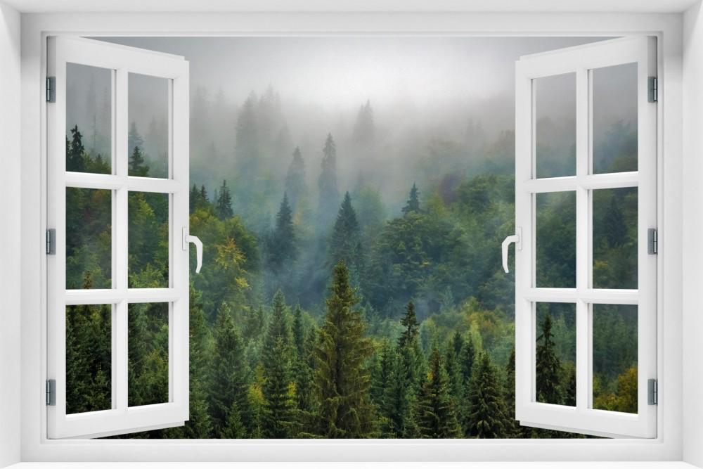 krl38-okno