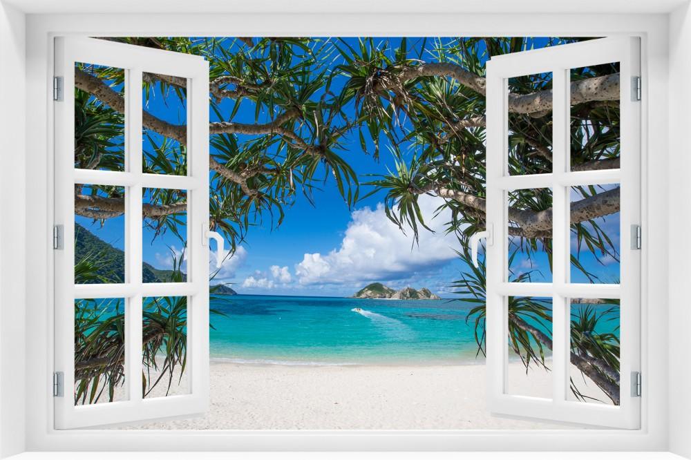 p86 okno