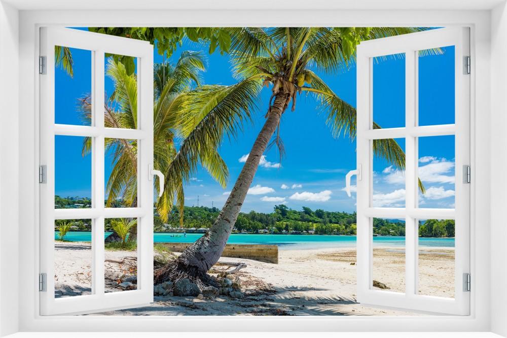 p87 okno