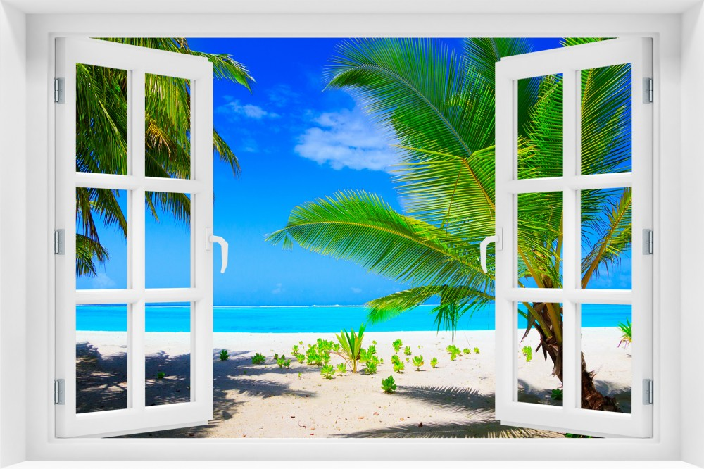p89 okno