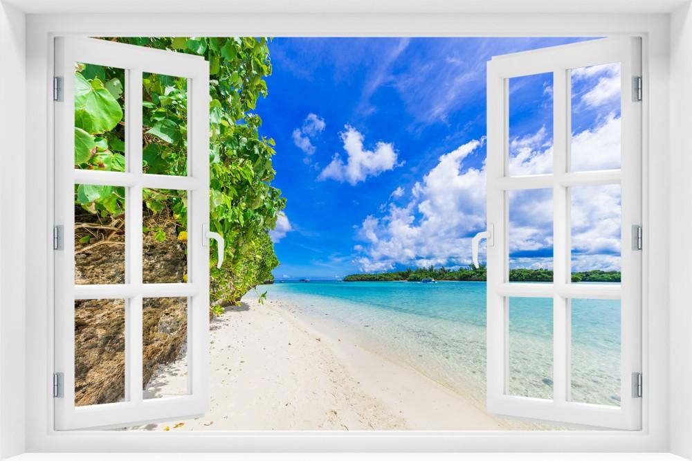 p97 okno