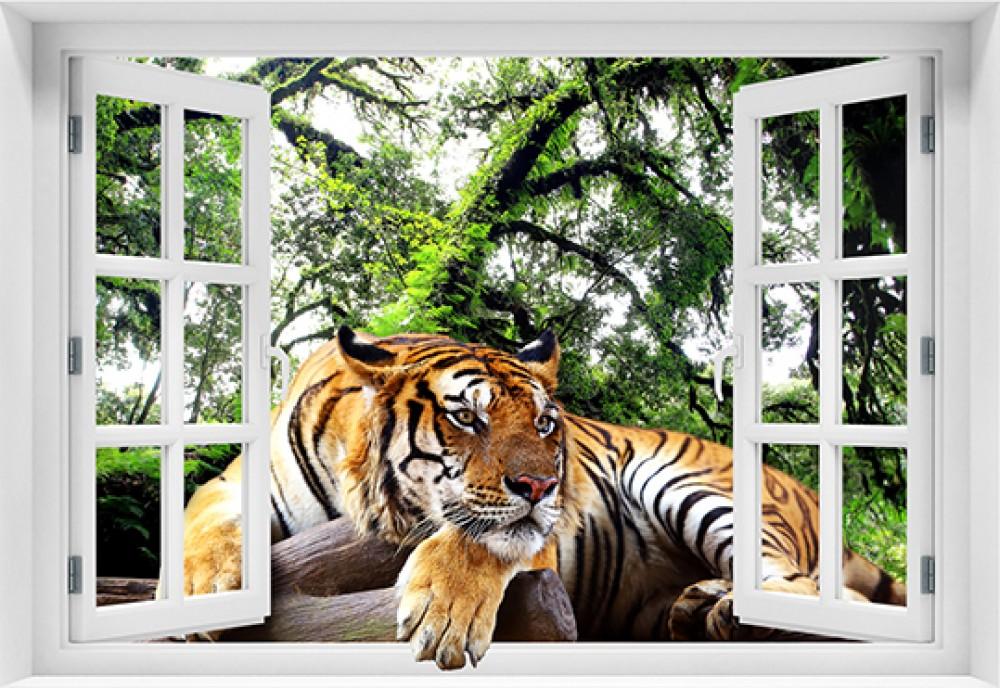 Tygrys w oknie - zt12